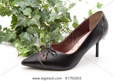 Black Lady Shoes with Green Sheets  on white background