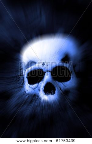 Human skull lying on top of dirt Zoomed
