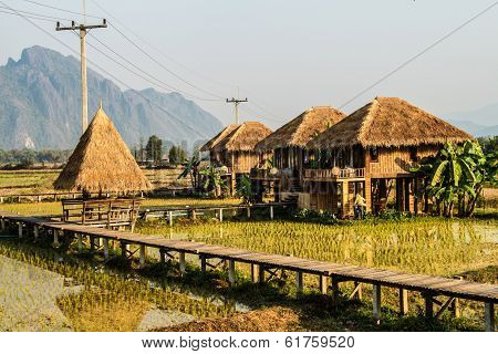 Resort Vang Vieng, Laos, areas of green rice fields