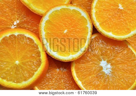 Orange Paradise