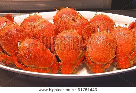 Boiled Langoustine crawfish