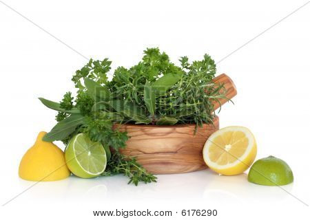 Lemon, Lime And Herb Leaf Freshness