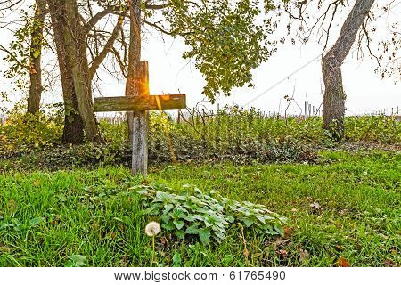 Cross With Dandelions In Sunset