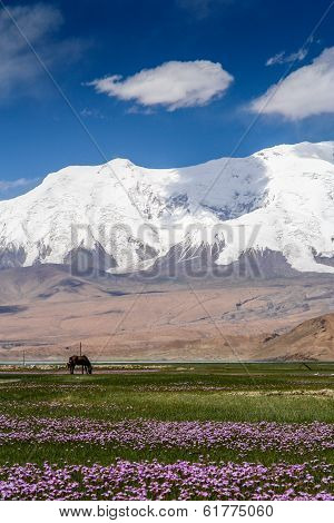 Stunning Karakorum landscape