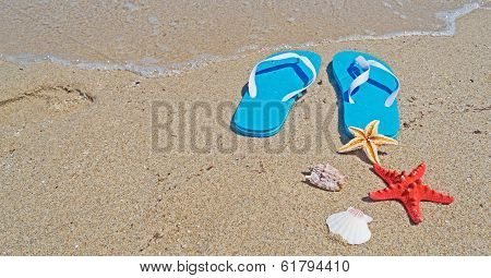 Sandals And Shells