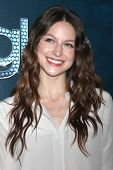 LOS ANGELES - MAR 18:  Melissa Benoist at the GLEE 100th Episode Party at Chateau Marmont on March 1