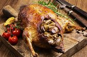 picture of barbary duck  - duck roasted with apples - JPG