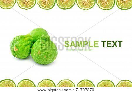 Bergamot (kaffir Lime) Frame