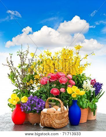 Colorful Spring Flowers And Easter Eggs Decoration