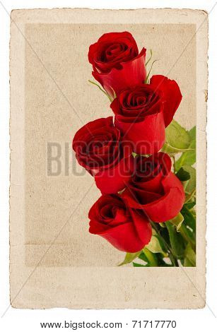 Bouquet Of Red Roses In Vintage Postcard Style