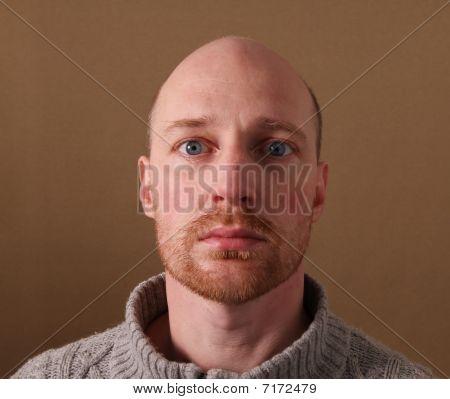 Portrait Man Beard Bald