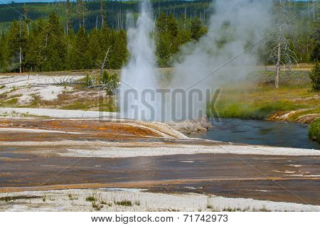 Cliff Geyser - Black Sand Basin Yellowstone