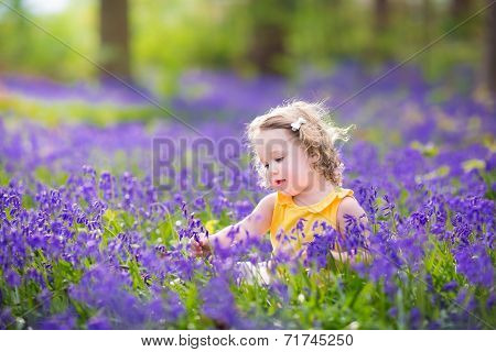 Cute Toddler Girl In Bluebell Flowers In Spring