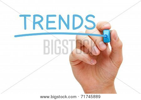 Trends Blue Marker