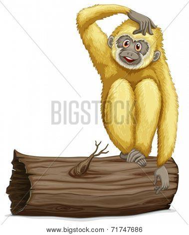 Illustration of a single gibbon on a log