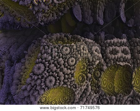 Bizarre Background Fractal Reef