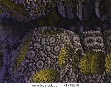 Bizarre Background Fractal Reef