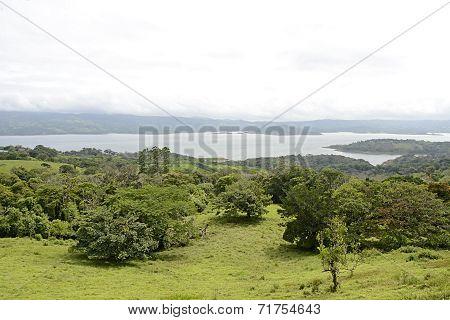 Lush Vegetation in Costa Rica