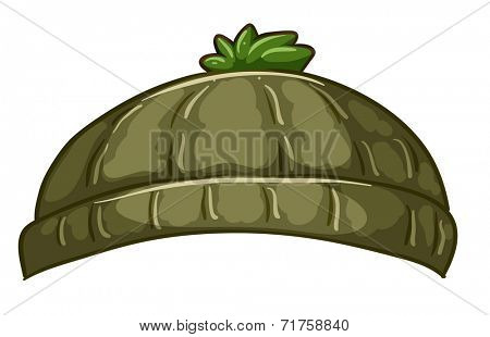 Illustration of a bonnet on a white background