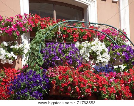 flowered balconies typical houses