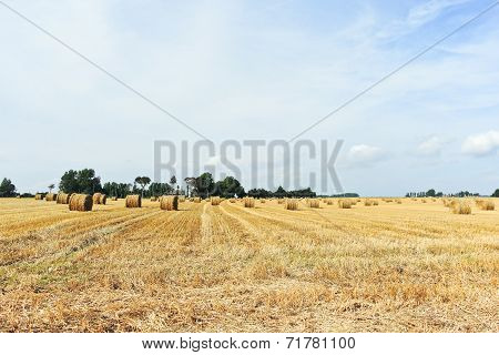 Panorama With Haystack Rolls On Harvested Field