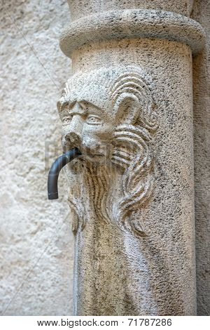 Drinking Water Source With Stone Lion Head