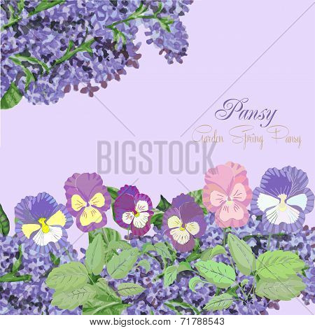 Background with pansies and lilac