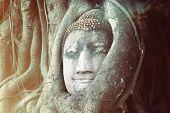 stock photo of budha  - Travel to Thailand - JPG