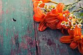 picture of lily  - Fresh lily flowers on aged wooden board - JPG