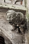 foto of gargoyles  - Stony gothic gargoyle on Town Hall in Marienplatz Munich Germany - JPG