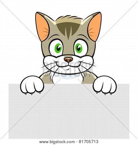 Cute Cat Banner