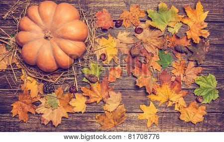 Pumpkin, Leafs And Chestnuts With Cone On Wooden Table.