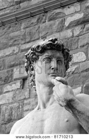 Black And White David Sculpture In Florence