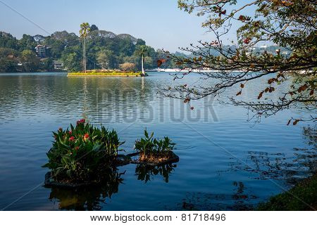 Lake In Kandy, Sri Lanka