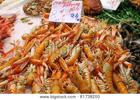 Shrimps On Ice At The Market