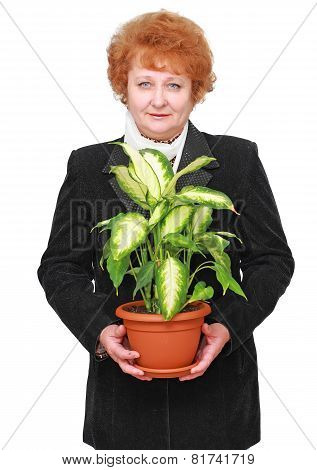 Friendly Senior Woman With House Plant, Flowers.
