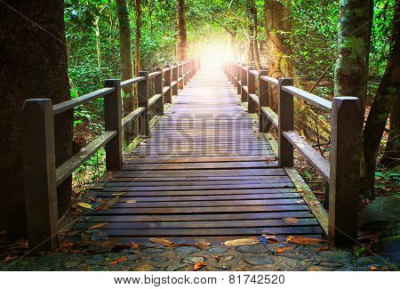 Perspective Of Wood Bridge In Deep Forest Crossing Water Stream And Glowing Light At The End Of Wood