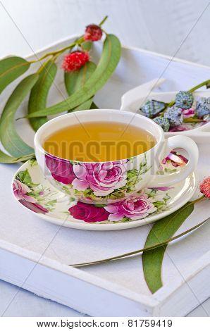 Eucalyptus Herbal Tea.