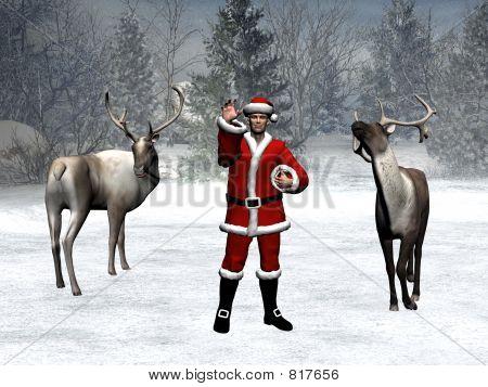 Winter wonderland, xmas, santa claus