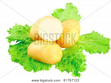 Young Potatoes, Decorating Of Lettuce . Isolated