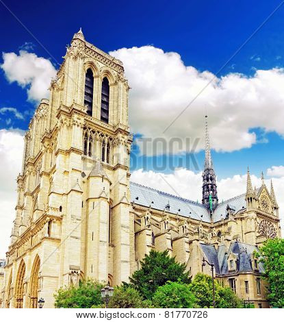 Notre Dame De Paris Cathedral, Garden With Flowers.paris. France.