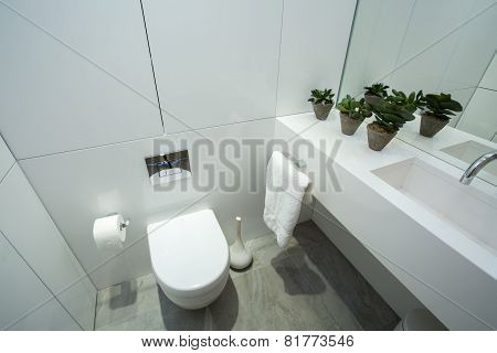 Interior Of White Bathroom
