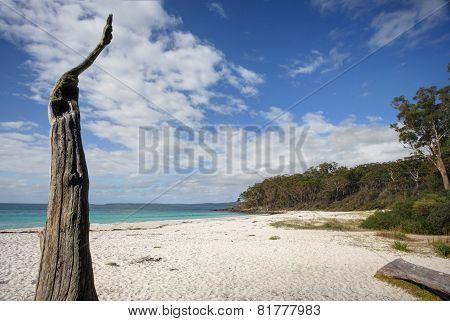 Greenfields Beach Jervis Bay Australia