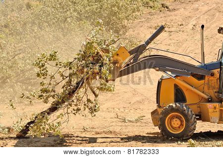 Backhoe Brush