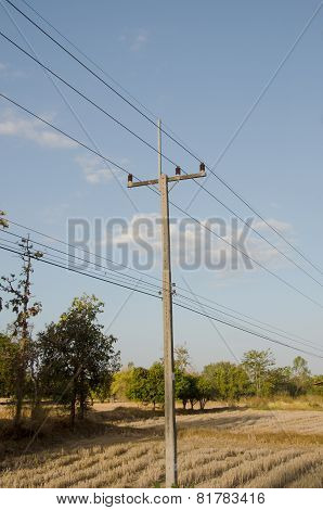 Rural Electrical Post By The Road