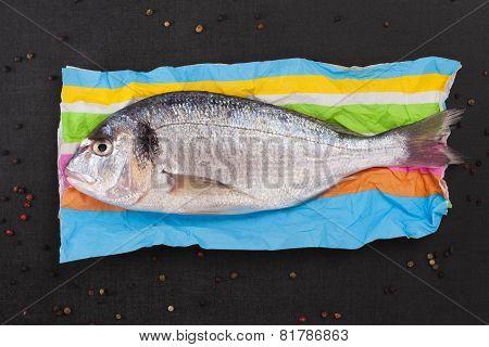 Gourmet Fresh Fish Eating.