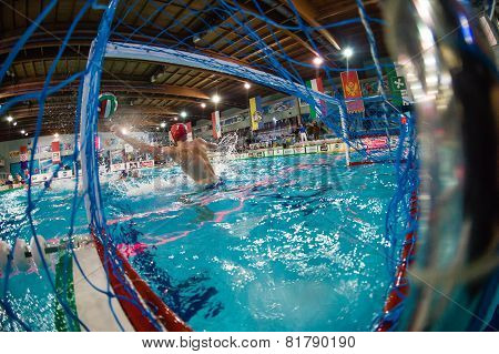 Milan - January  30:  Paolo Oliva,Goalie Como Nuoto   In Game Bpm Sport Management - Como N