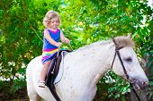 stock photo of zoo  - Cute little toddler girl having fun on a horse ride enjoying family trip to a zoo on a hot summer day - JPG