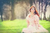 picture of aristocrat  - Portrait of a beautiful redhead women in the park