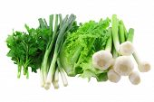 picture of bine  - Vegetable - JPG
